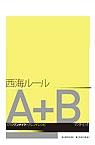 A+B染髮技術-西海洋史
